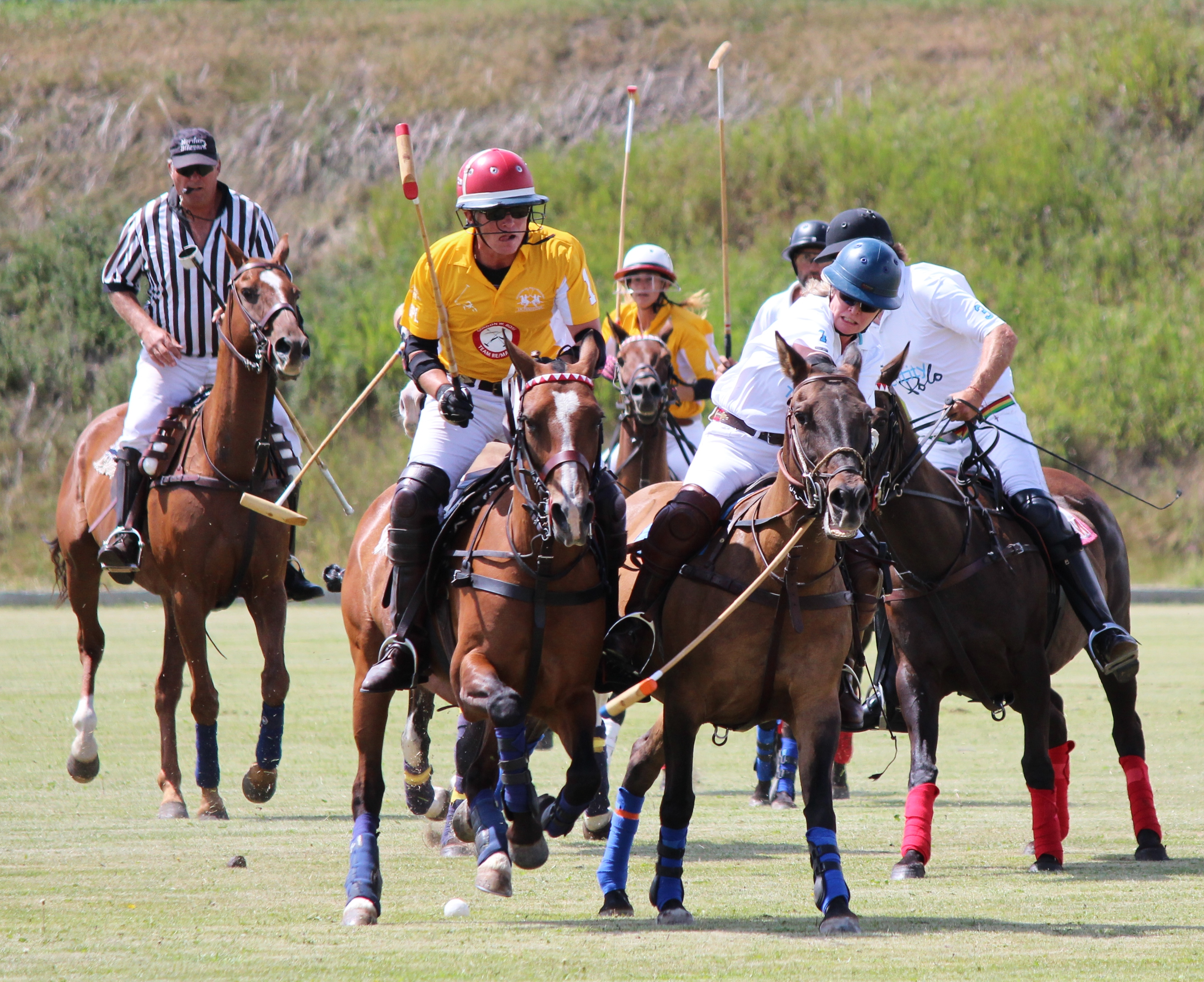 Action from The Calgary Challenge Cup