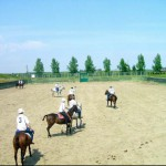 The Polo School at Calgary Polo Club.